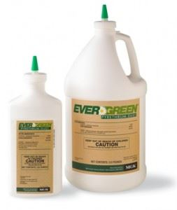 Picture of EverGreen Pyrethrum Dust Insecticide OMRI Listed